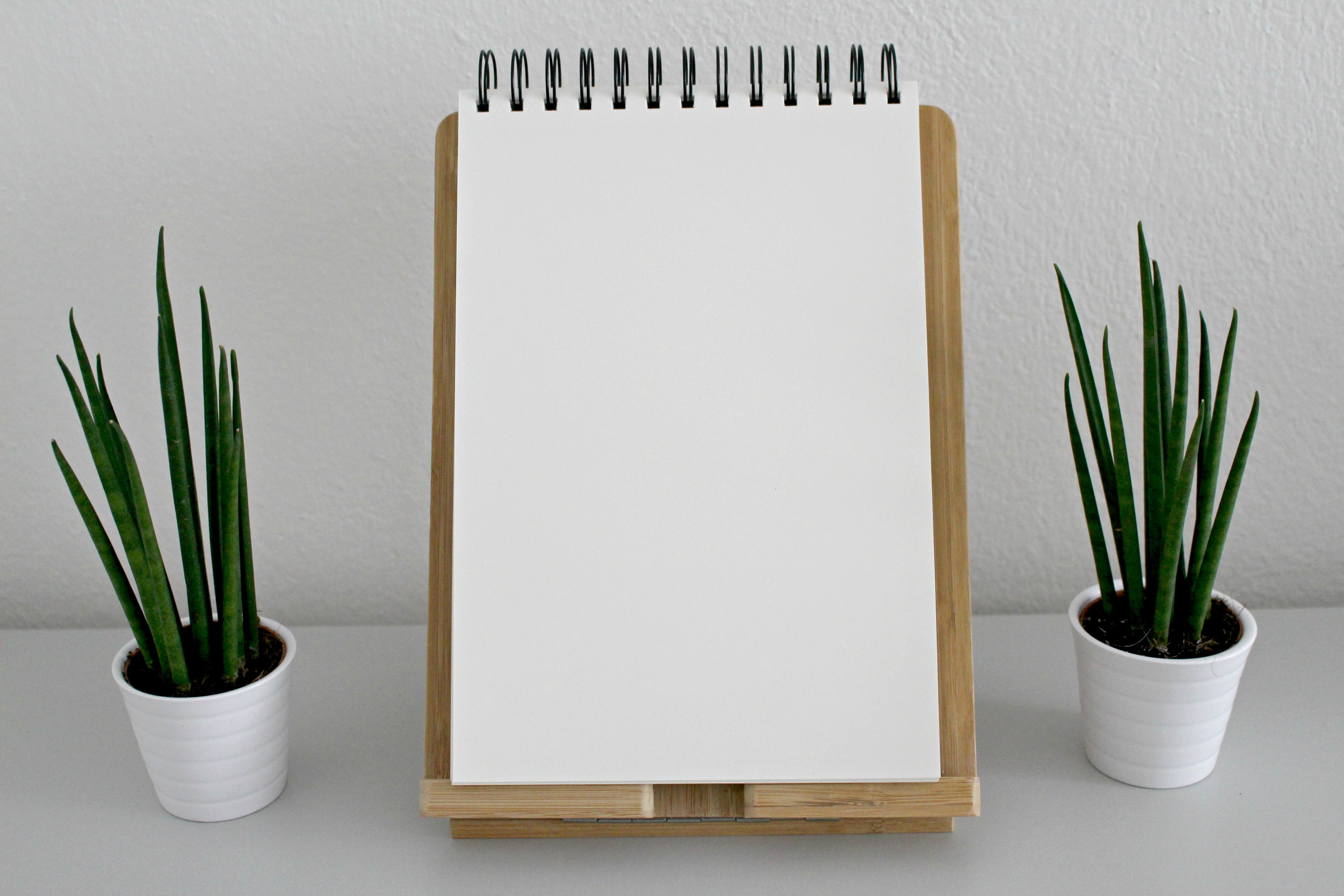 blank-book-pages-desk-green-531844